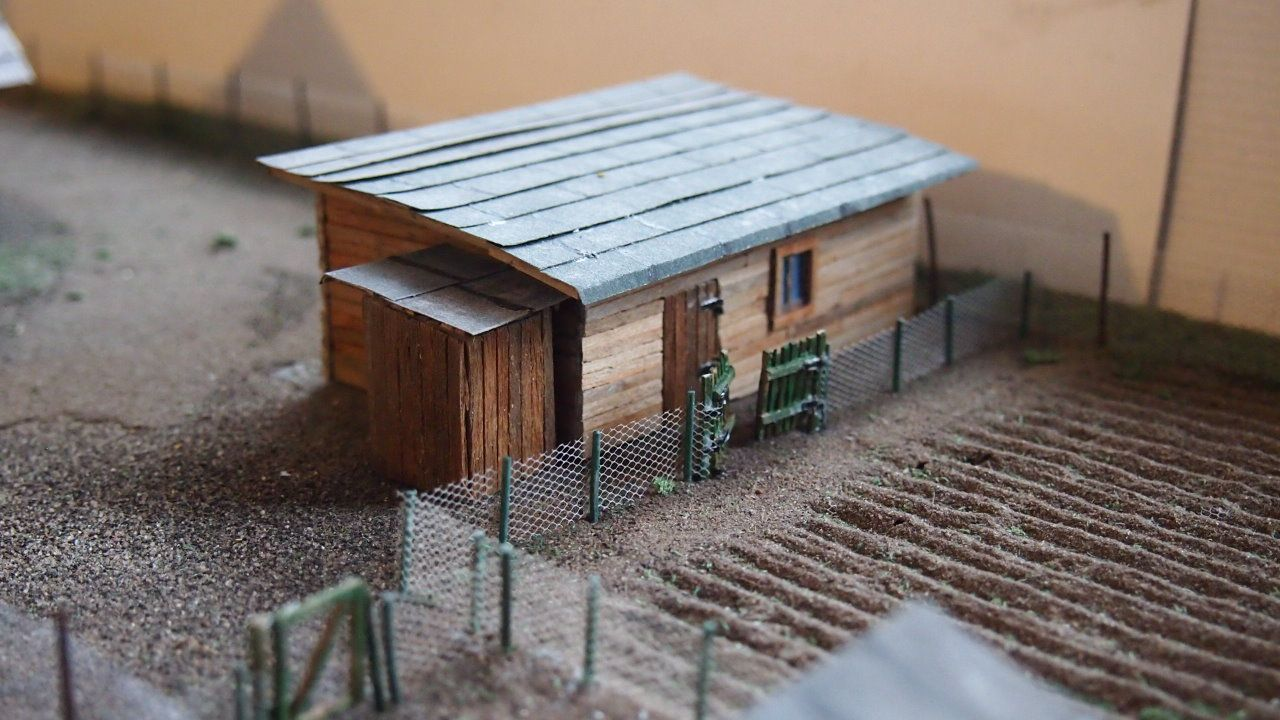wood shed 11