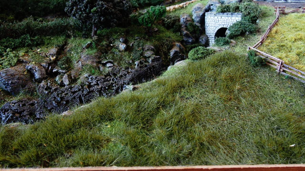 static grass tuft field