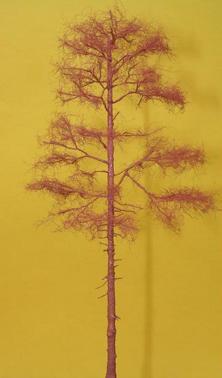 example tree 2