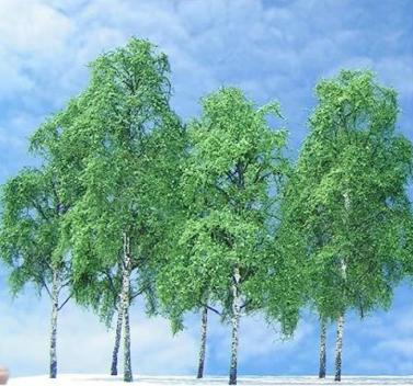 example tree 4